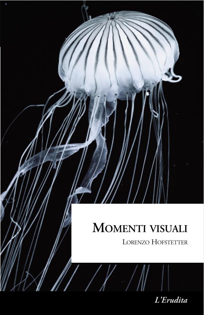 Momenti visuali