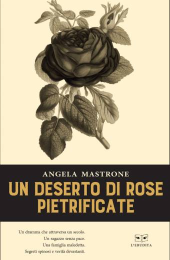 un deserto di rose pietrificate